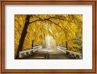 Bridge to Fall III Fine-Art Print