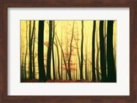 Red Leaves Fine-Art Print