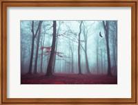Solstice in Fog Fine-Art Print