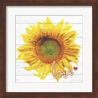 Sun Love Fine-Art Print