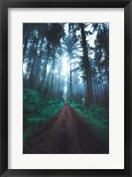 Forest Pathways Fine-Art Print