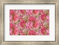 Pink Roses and Hydrangea Fine-Art Print
