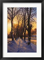 Snowy Evening Fine-Art Print