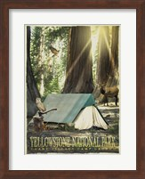 Redwood Camping Fine-Art Print
