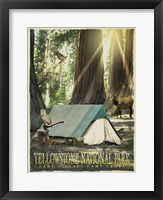 Redwood Camping Fine-Art Print
