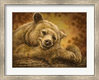 Sleepy Bear Fine-Art Print