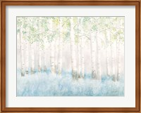 Soft Birches Fine-Art Print