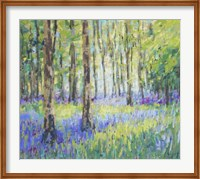 Bluebell Woods Fine-Art Print