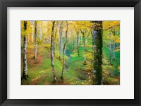Dream of Birches Fine-Art Print