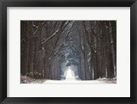 Cold Road Fine-Art Print