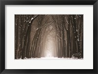 Lochem in Winter Fine-Art Print