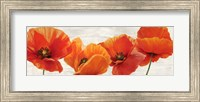 Bright Poppies Fine-Art Print