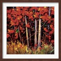 Reds Fine-Art Print