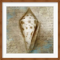 Ocean Treasure Fine-Art Print
