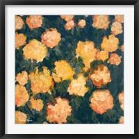 Marigolds Fine-Art Print