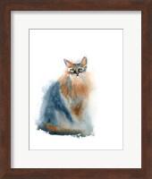 Ginger Cat II Fine-Art Print