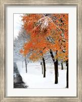 SnowFall III Fine-Art Print