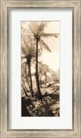 Equatorial Breeze I Fine-Art Print