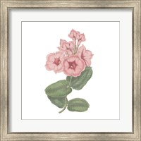 Monument Etching Tile Flowers VI Fine-Art Print