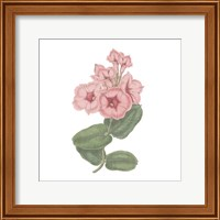 Monument Etching Tile Flowers VI Fine-Art Print