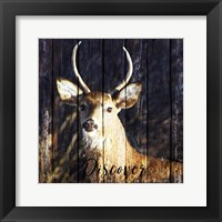 Discover the Beauty Fine-Art Print