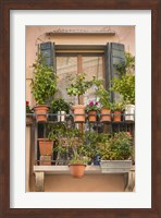 Italian Window Flowers III Fine-Art Print
