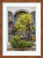 Italian Window Flowers IV Fine-Art Print