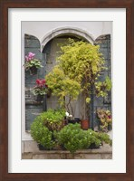 Italian Window Flowers IV Fine-Art Print