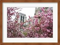 Notre Dame 1 Fine-Art Print