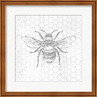 Grey Bee Fine-Art Print