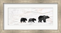 Bear Family Fine-Art Print