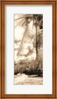 Equatorial Breeze II Fine-Art Print