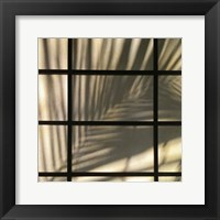 Palm Window Fine-Art Print