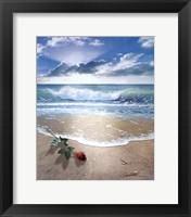 Gift From Sea Fine-Art Print