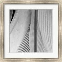 Leaf Abstract IV Fine-Art Print