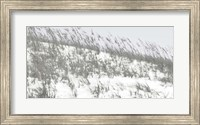 Lush Dunes II Fine-Art Print