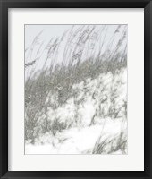 Lush Dunes IV Fine-Art Print