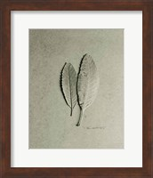 Serrated Duo Fine-Art Print