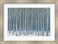 Shimmering Birches Fine-Art Print