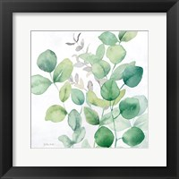 Eucalyptus Leaves I Fine-Art Print