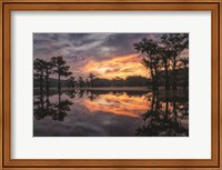 Sunrise in the Swamps Fine-Art Print