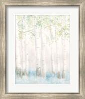 Soft Birches III Fine-Art Print