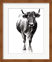 Charcoal Cattle II Fine-Art Print