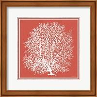 Coastal Coral on Red I Fine-Art Print