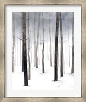Hazy Winter Walk I Fine-Art Print