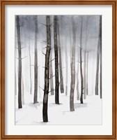 Hazy Winter Walk II Fine-Art Print