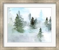 Foggy Evergreens II Fine-Art Print