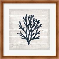 Driftwood Coast VII Blue Fine-Art Print