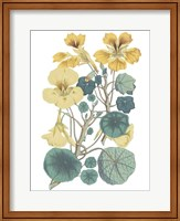 Antique Botanical XVII Cool Fine-Art Print