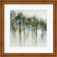Forest Glen Fine-Art Print